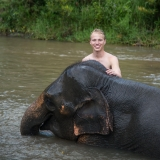 ISyE third-year Andrew Yowell visits an elephant reservation during a weekend trip to Chiang Mai, Thailand.