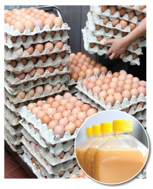 Of the estimated 215 million cases of eggs produced in 2009, 30% were removed from their shells and turned into liquid, frozen, and dried egg products used by the food service industry and as ingredients in other foods.