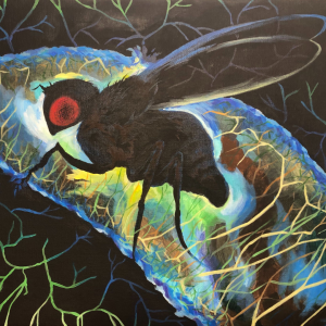 Art by Rayen Kang, paired with researcher Erin Lottes